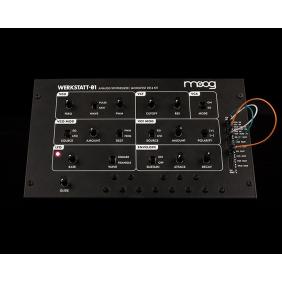 Moog Werkstatt-01 und CV...